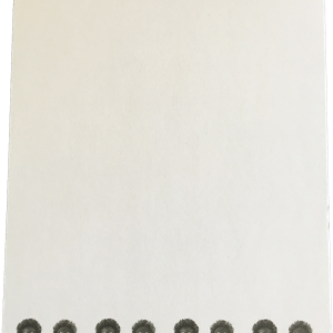 Notepad with male and female golliwogs