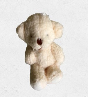 Miniature Teddy
